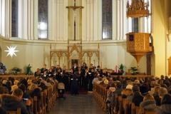 Рождественский концерт в соборе свв. Петра и Павла, 6 декабря 2014 г.